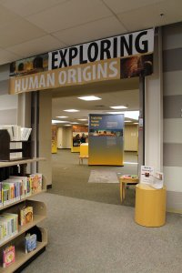 """Inside a library, the entrance is shown to the traveling exhibit, titled """"Exploring Human Origins."""""""