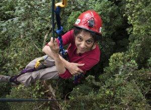 Nalini Nadkarni climbing a tree canopy in a harness and a hemlet