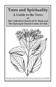 The pamphlet cover, featuring a drawing of a plant.
